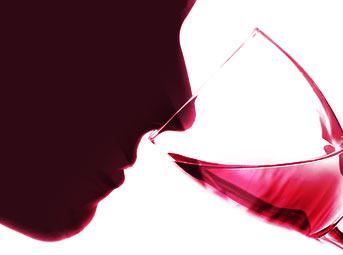 Catador de vinos - Curso Online
