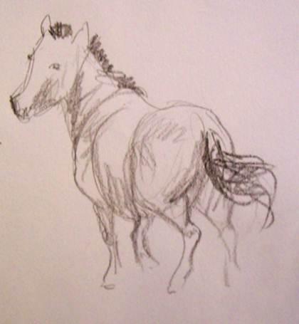 Aprender a dibujar caballos - Curso online