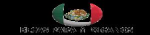 cropped-becas-para-mexicanos